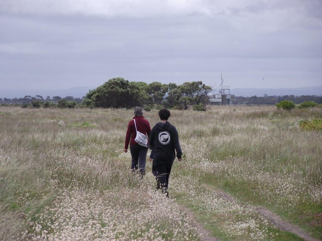 Through grassland