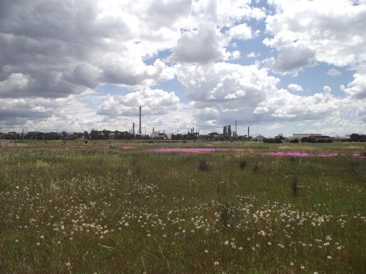Altona refinery